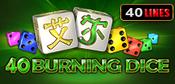 40_Burning_Dice