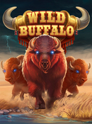 wild_buffalo