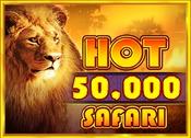 Hot Safari 50,000